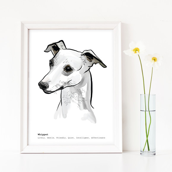 Whippet dog breed traits print