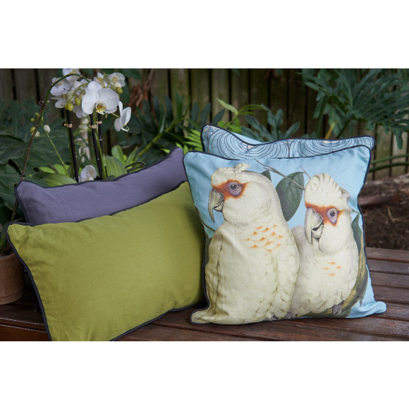Coral Blue Corellas with the new Mid Century cushions in Olive and Pewter