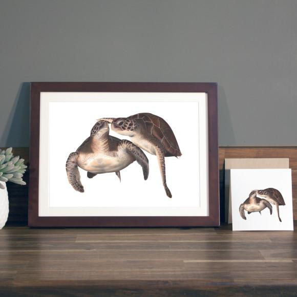 Turtles print A4 mocha frame