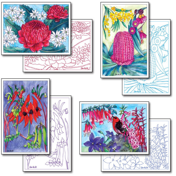 Australian Wild flower cards to colour