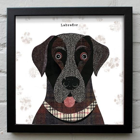 24. Labrador