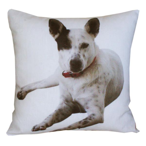 Custom Pet Cushion