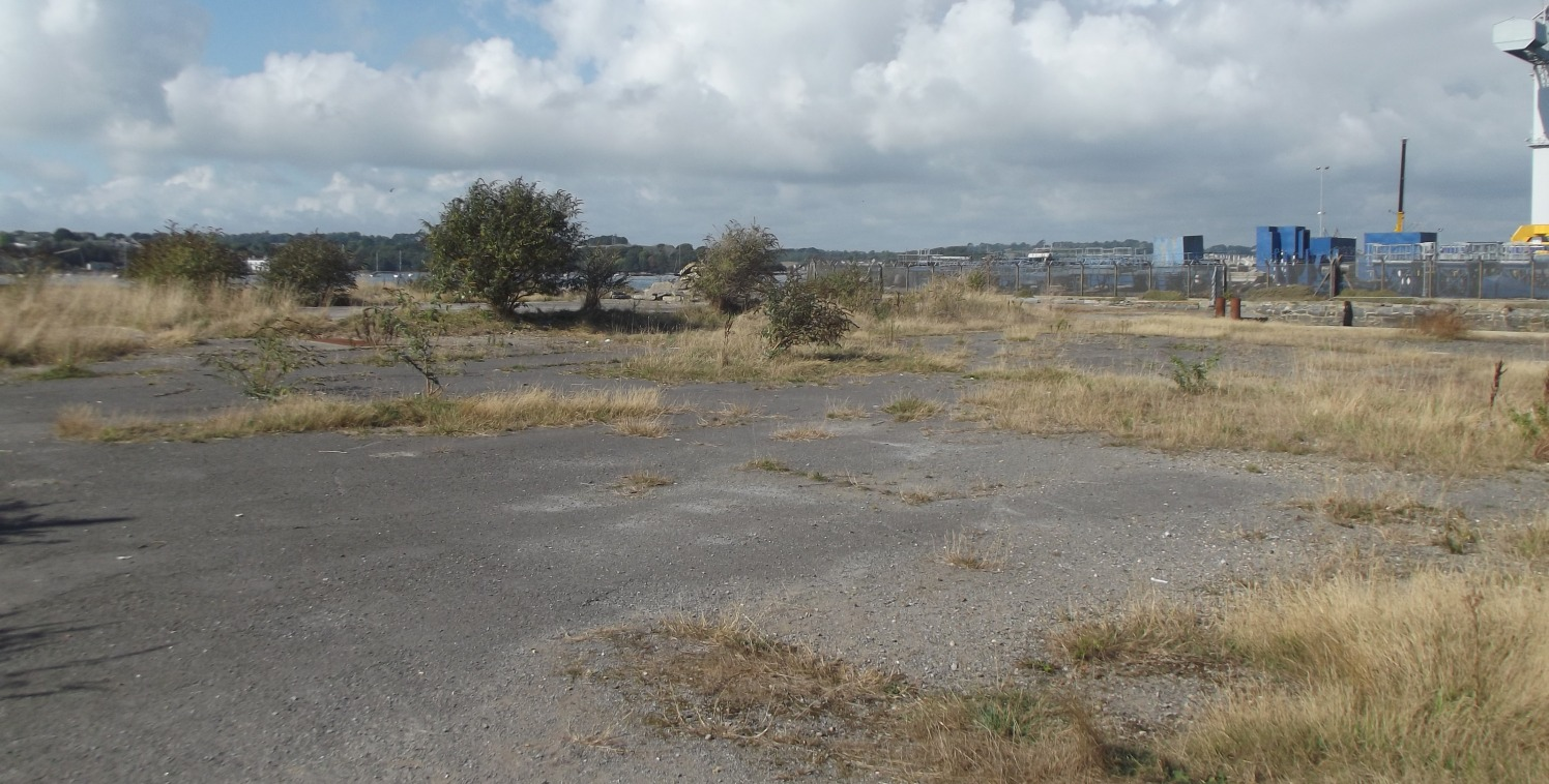 This site has been cleared of all buildings and extends to  approximately 0.44 hectares (1.08 acres) and is level  throughout. The site has formerly had a history of extensive  commercial uses, the most recent of which was for the grit  blasting of m...