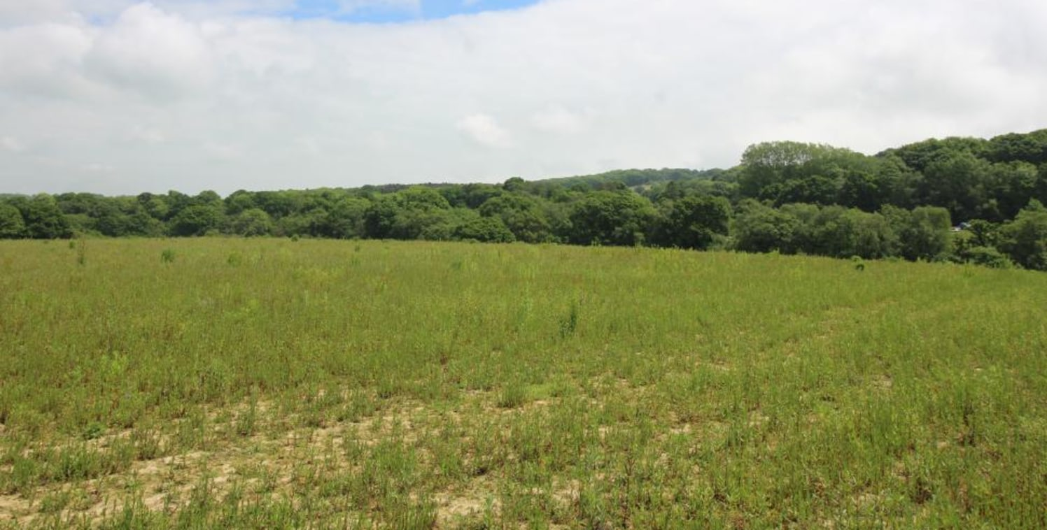 A parcel of gently sloping arable land. In all about 18.5 acres (7.49 ha).
