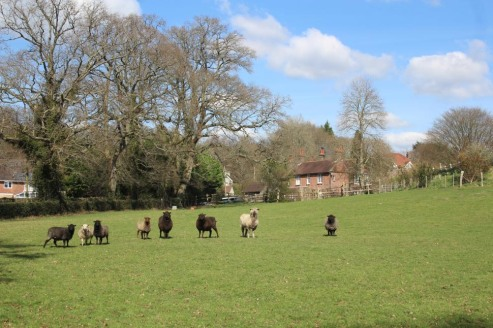 A residential and equestrian property with a detached seven bedroom Victorian farmhouse. The property extends in all to about 19 acres.