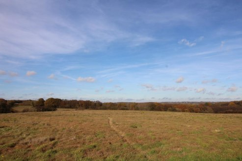 A parcel of gently sloping agricultural land with a woodland shaw. In all about 34.74 acres (14.