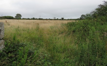 Residential Building Plots to the Rear of Grenville Arms, Conditional Planning for 2 x 3 Bedroom properties, Village Location on the outskirts of Camborne, £140,000 for both or £70,000 per plot, Plot Size Approx 0.12 acres (0.04 hectares)