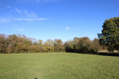 Pasture with a woodland shaw and road frontage to the A21. In all about 6.6 acres.