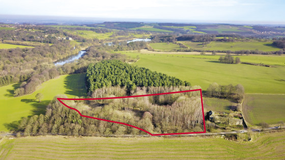 The woodland and former outdoor picnic area is elevated from the road and access is via a concrete driveway. The land gently slopes northwards and could be used for agricultural or woodland purposes subject to the appropriate planning permission.