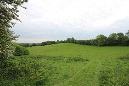 A non-residential agricultural holding located on the village outskirts. Hedge enclosed pasture fields with woodland shaws. In all about 94 acres.