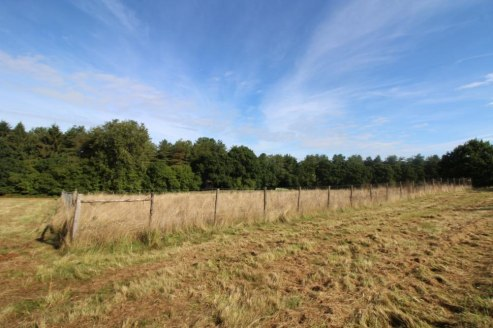 Pasture field in a rural location with a fenced enclosure, yard area and a fully enclosed storage hut.In all about 8.2 acres.