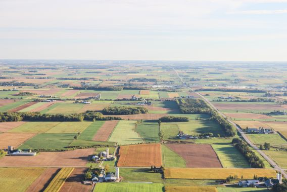 An aerial photograph of farmland with different plots, some of which are brown and others of which are green.