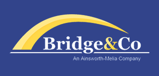 Bridge & Co Logo