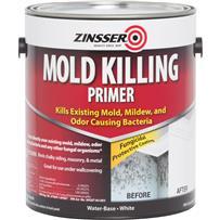 Zinsser Mold Killing Interior/Exterior Primer