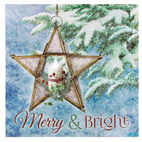 TIMELESS BY DESIGN X47691 LIGHTED GLASS STAR CANVAS
