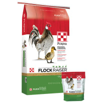 Purina Flock Raiser Crumbles Poultry Feed 50 Lbs  3003340-306