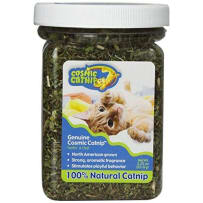 COSMIC CATNIP 89988 GENUINE COSMIC CATNIP 2.25 OZ JAR