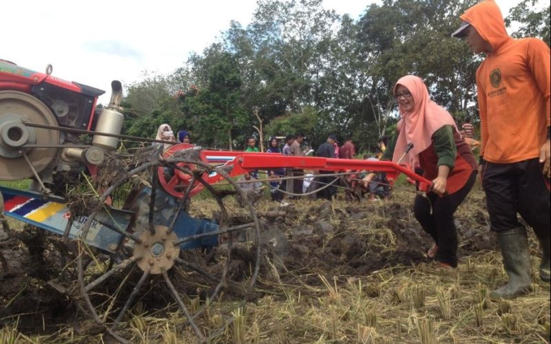 Sekolah Lapang Badan Restorasi Gambut di Kalimantan Selatan