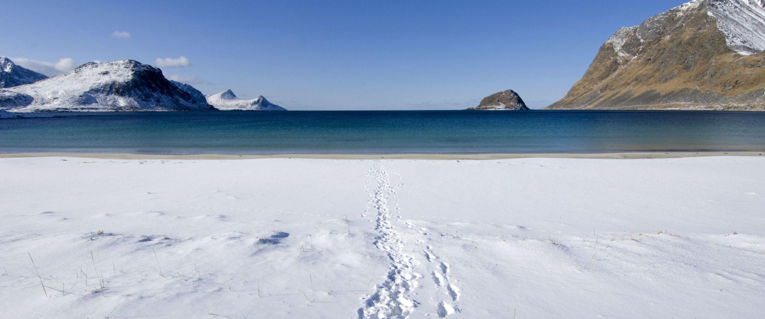 Beach covered with snow in Lofoten, photo, Terje Rakke, Nordic Life, nordnorge.com