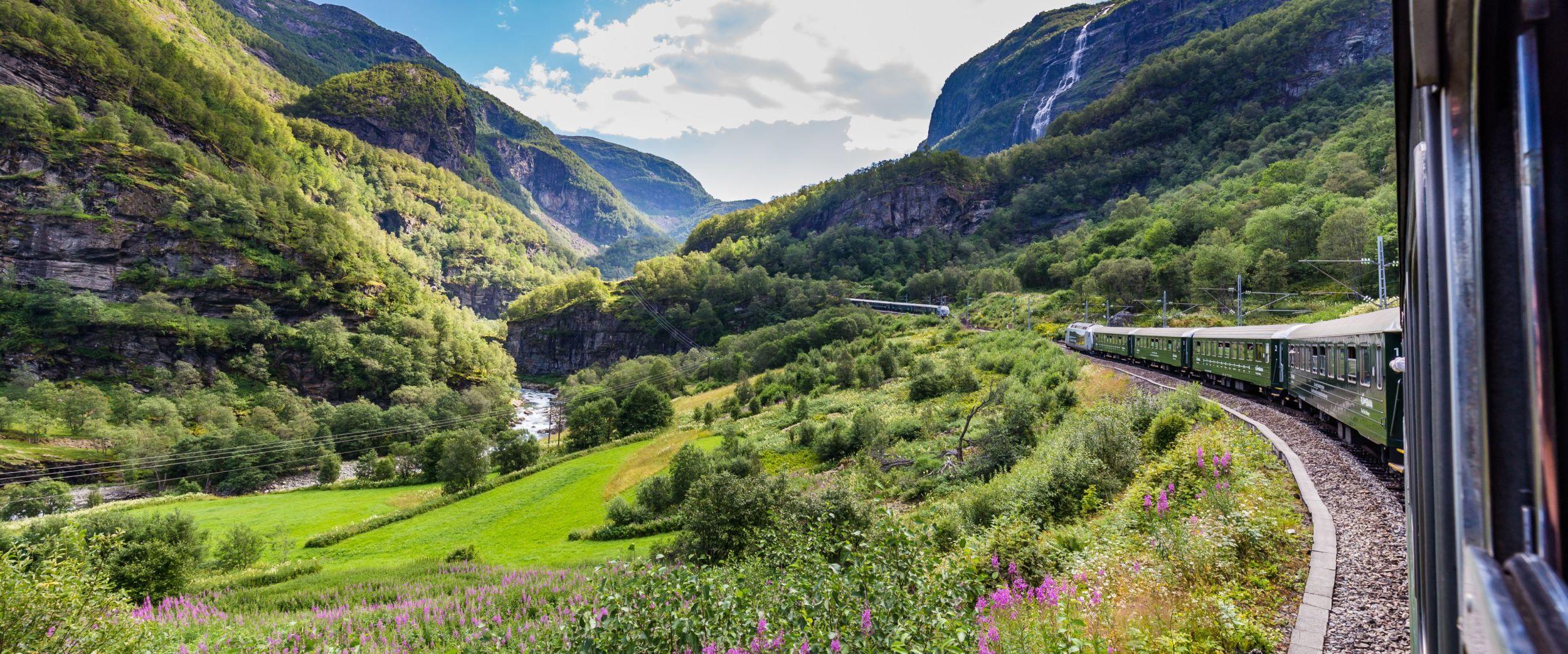 Train in beautifull surroundings, Norway in a Nutshell.