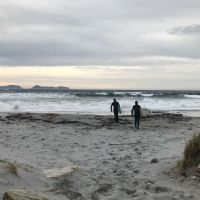 Surfers apporaching the big waves at Sandvika in Alnes outside Alesund