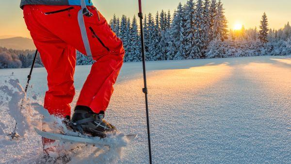 Snowshoeing in beautiful landscape.