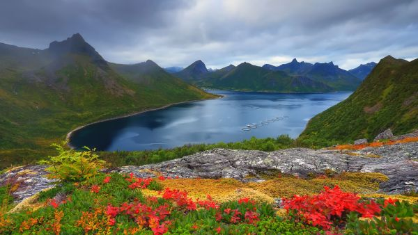 Autumn in Lofoten.