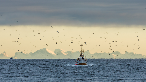Traditional fishing boat in Lofoten. Photo: Knoff, visitnorway.com
