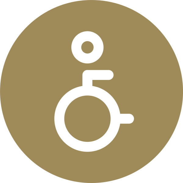 Icon with wheelchair
