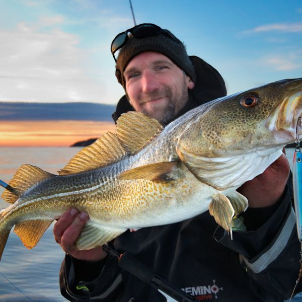 A happy man with his catch a fresh norwegian cod.