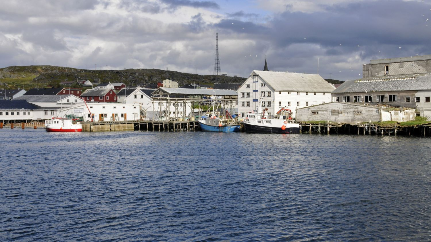 Port of Berlevåg