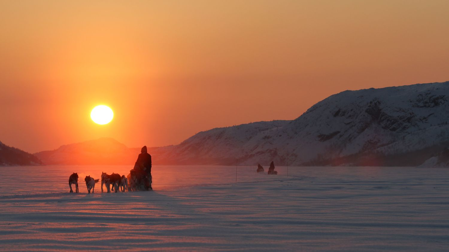 Dog sledding with huskies in the sunset. Photo: Apollonia Körner