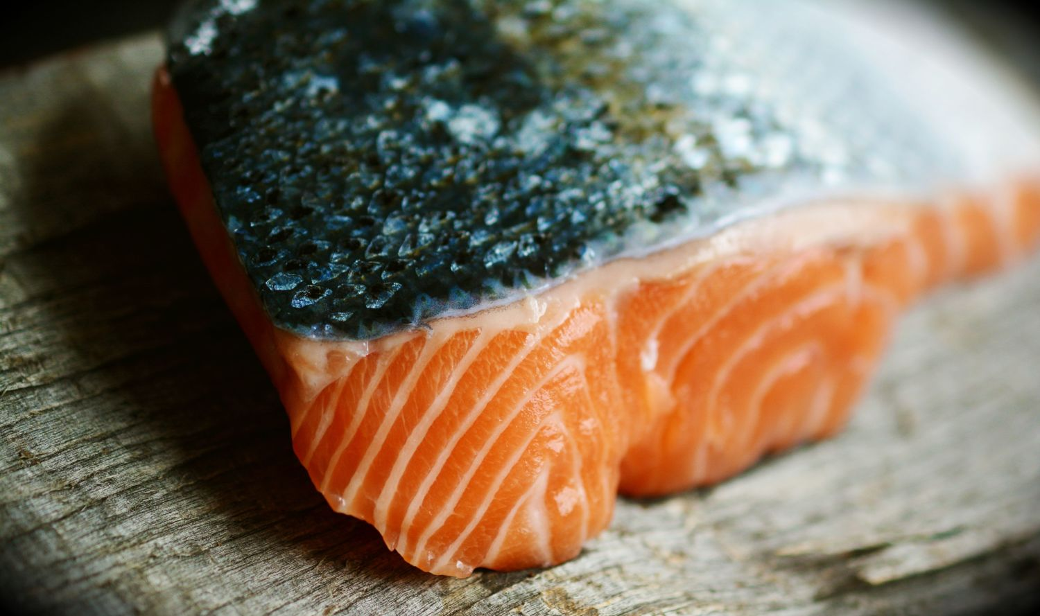 Salmon. Photo: Congerdesign for Pixabay