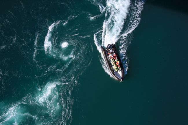 Rib seen from above.