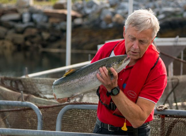 Man holding a salmon, photo: Olaf Søla