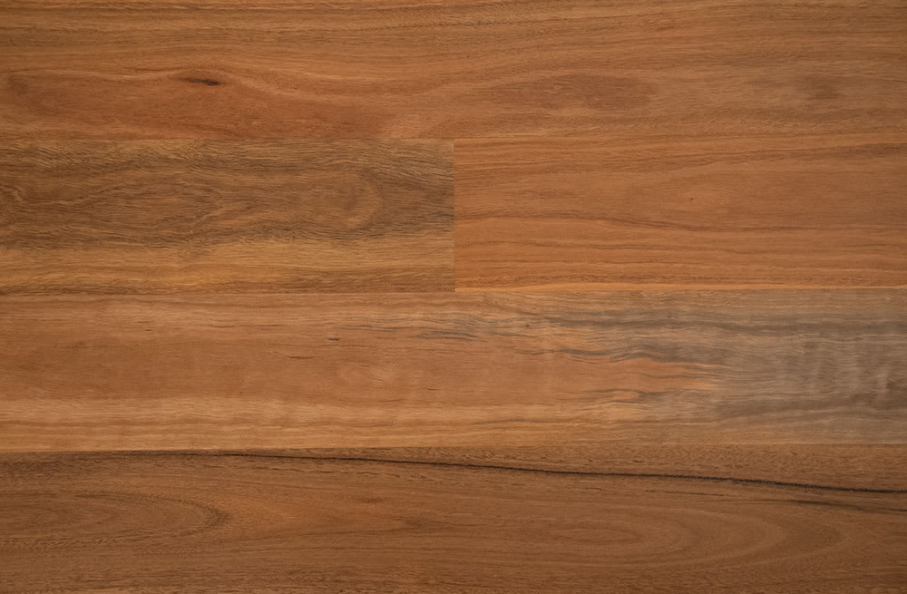 Panel | EP112 Spotted Gum | AU | 1