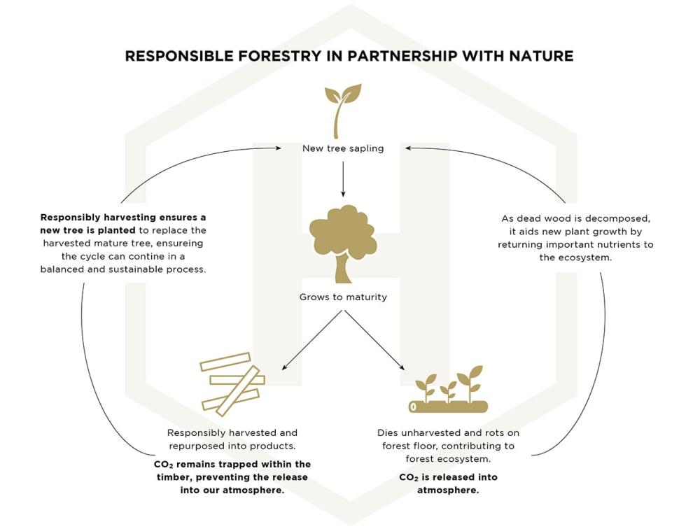 News | AU | Sustainability 06 Infographic