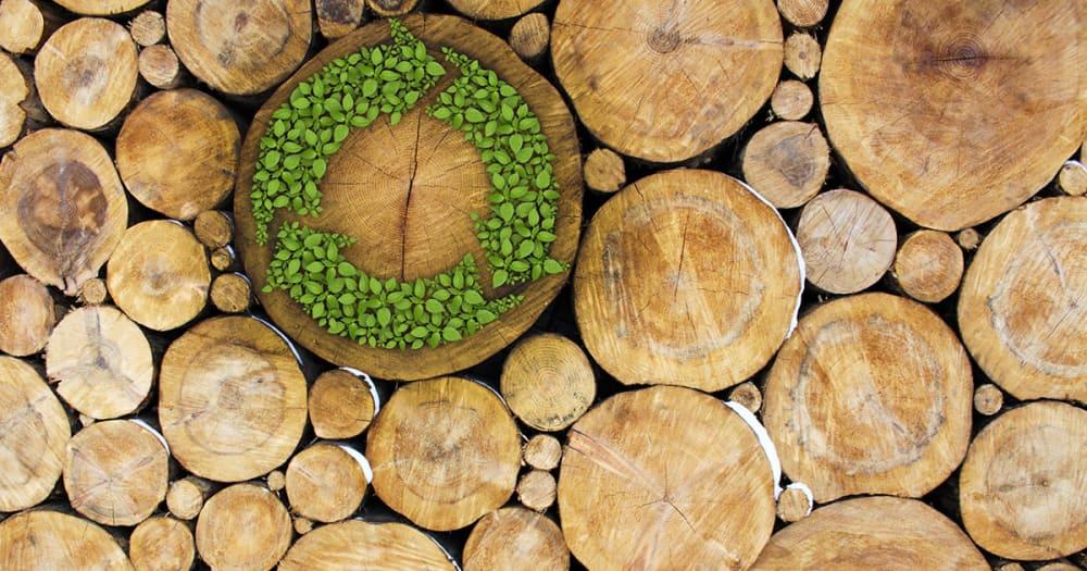 News | AU | Sustainability 08 LI