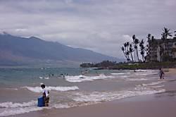 Maui Banyan B201