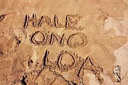 Hale Ono Loa 307