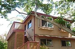Kihei Treehouse Cottage