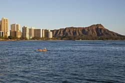 Hawaiian King 512