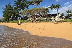 Islander on the Beach Condo