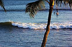 Hono Kai Beach Resort