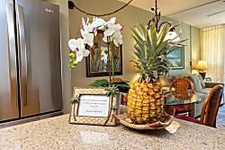 Maui Banyan Condo