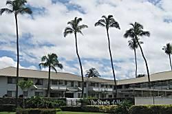The Shores of Maui