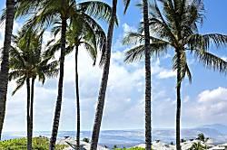 Vista Waikoloa D201