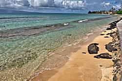 Maui Sands 5C
