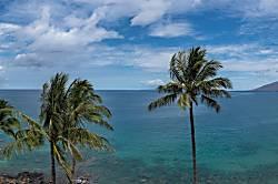 Royal Mauian #610