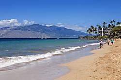 Maui Banyan #B-204